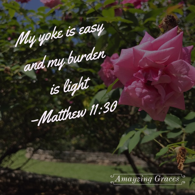 My yoke is easy and my burden is light, Matthew 11:30, Amayzing Graces, Karen May