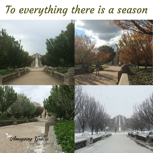 to everything there is a season, Ecclesiastes 3; Karen May; Amayzing Graces, amazing grace