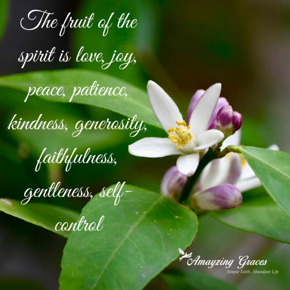 The fruit of the spirit is love, joy, peace, patience, kindness, generosity, faithfulness, gentleness, self-control, Galatians 5:22-23, Karen May, Amayzing Graces