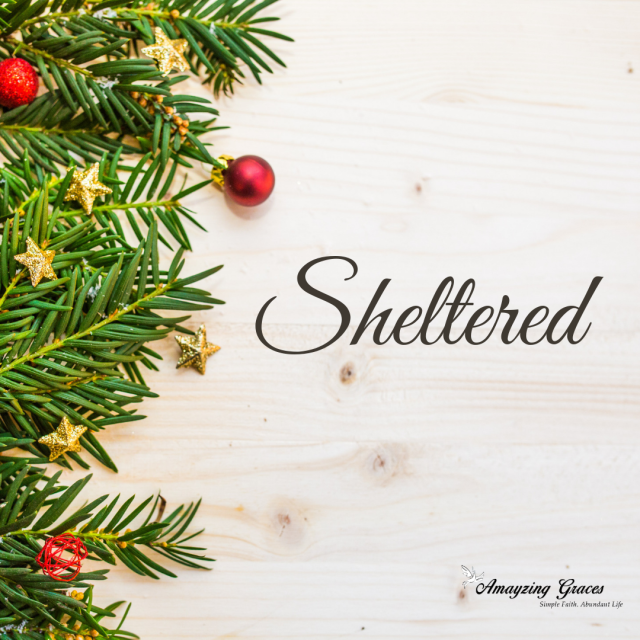 Sheltered, Advent, Karen May, Amayzing Graces