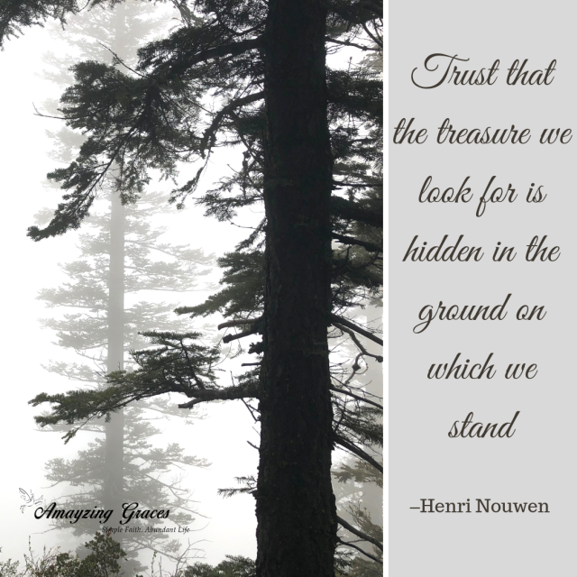 trust-that-the-treasure-we-look-for-is-hidden-in-the-ground-on-which-we-stand-henri-nouwen-karen-may-amayzing-graces-hidden-treasure