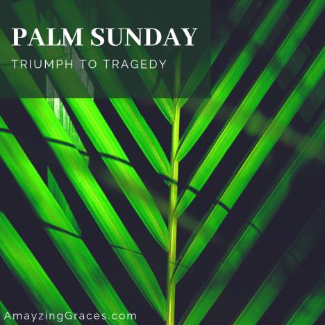 Palm Sunday, Triumph to Tragedy, Holy Week, Karen May, Amayzing Graces