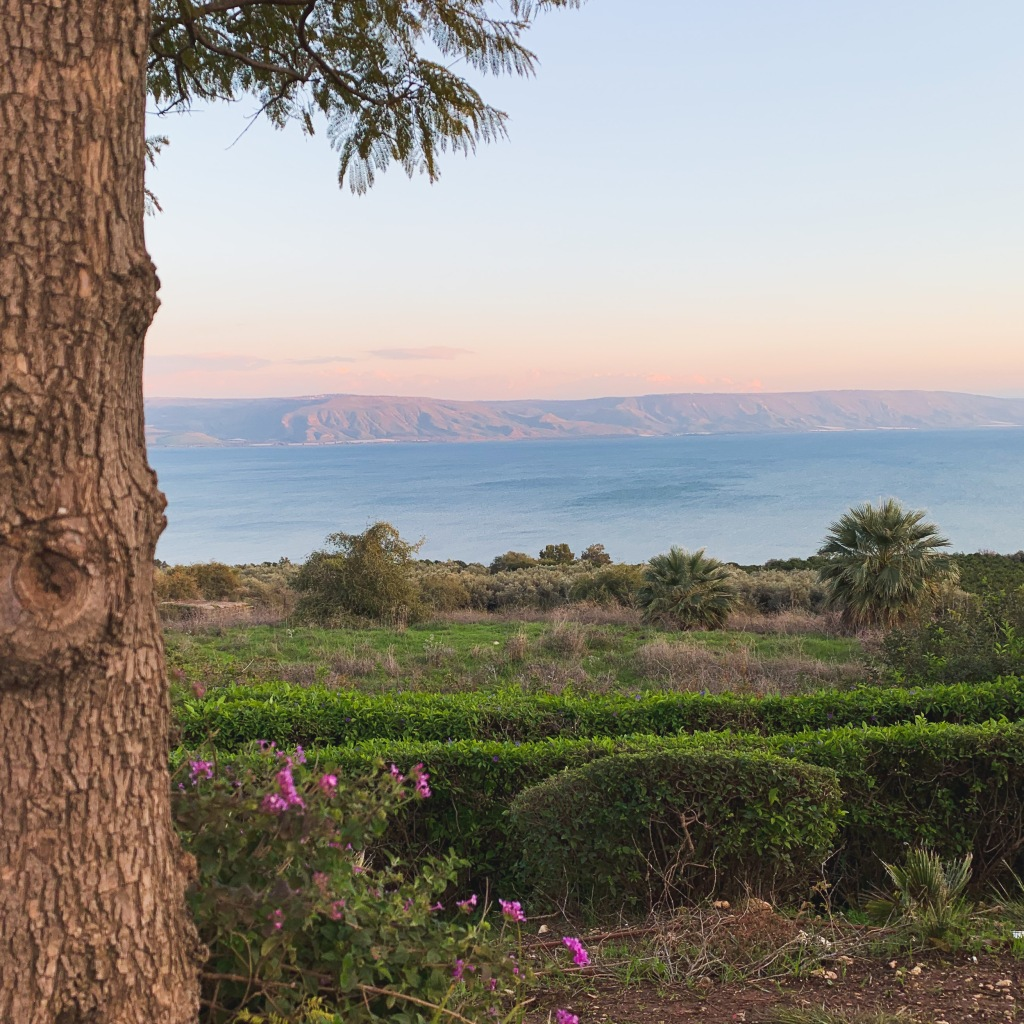 View of the Sea of Galilee, Karen May, Amayzing Graces